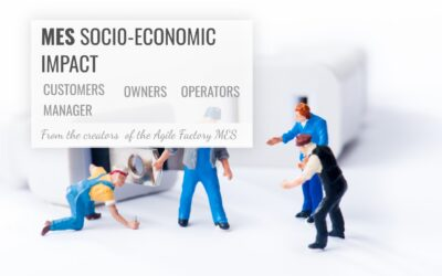 L'impatto socioeconomico del sistema MES